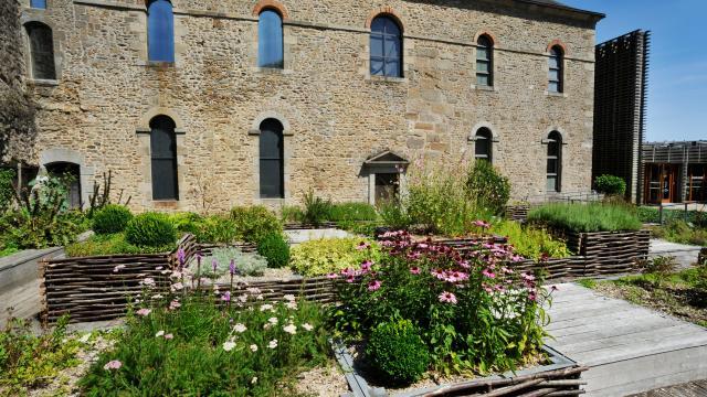 Chateau Musee Mayenne Jardin