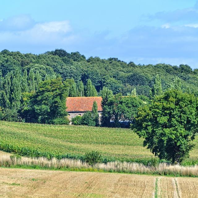Ferme Haute Mayenne