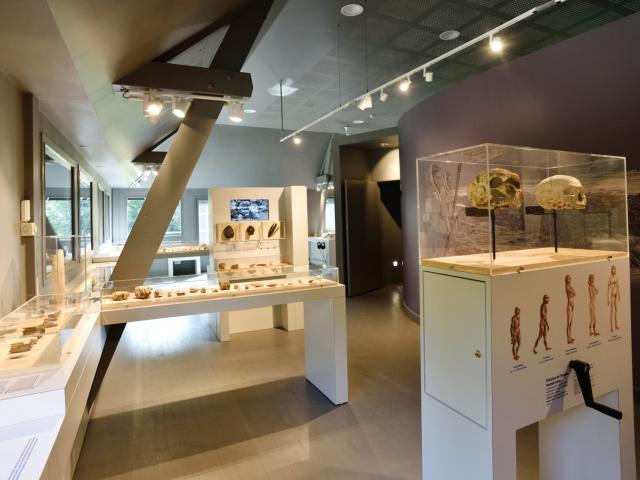 Musée de Préhistoire Saulges