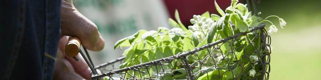 Atelier Cuisinez Des Plantes Sauvages Comestibles A La Rencontre Des Plantes Saint Gemmes Me Robert