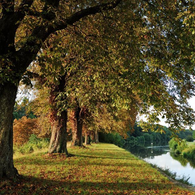 Riviere La Mayenne à Menil
