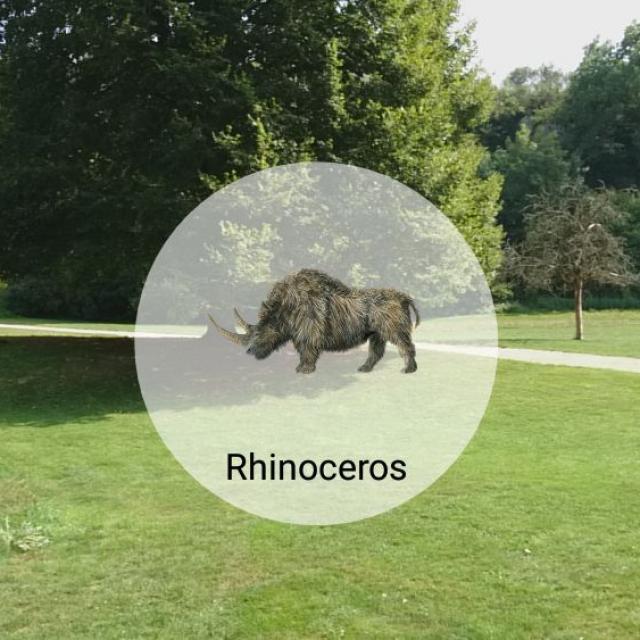 Appli Coëvrons-découverte - Animal Virtuel